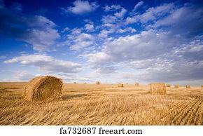 Free Bundle Hay Art Prints and Wall Artwork | FreeArt