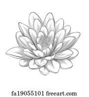 Free Art Print Of Black And White Lotus Flower Painted In Graphic