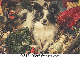 Free Art Print Of Small Dog Christmas Card Portrait Of Little Black