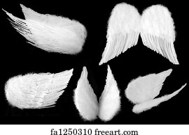 angel wings art print many angles of guardian angel wings isolated on black - 1000 Free Prints