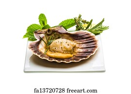 ... asparagus lime mint and rosemary scallop with asparagus lime mint and