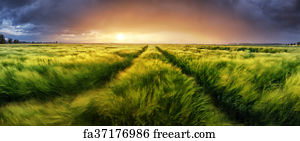 Free Art Print Of Storm And Light On Meadow Panorama Landscape Freeart Fa37176986