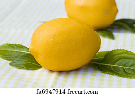 Ckground Art Print - Natural Lemon