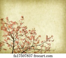 Free Kapok Tree Art Prints and Wall Artwork | FreeArt