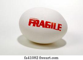 The Fragile Egg