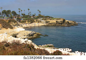 Free art print of la jolla cove in california activity abounds with art print la jolla cove reheart Image collections
