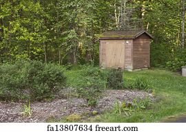storage shed art print small storage shed in a forest